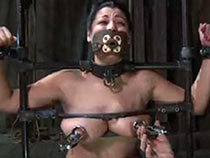 Dana Vixen from Iniquitous Restraints